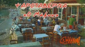 makis_bus_card1